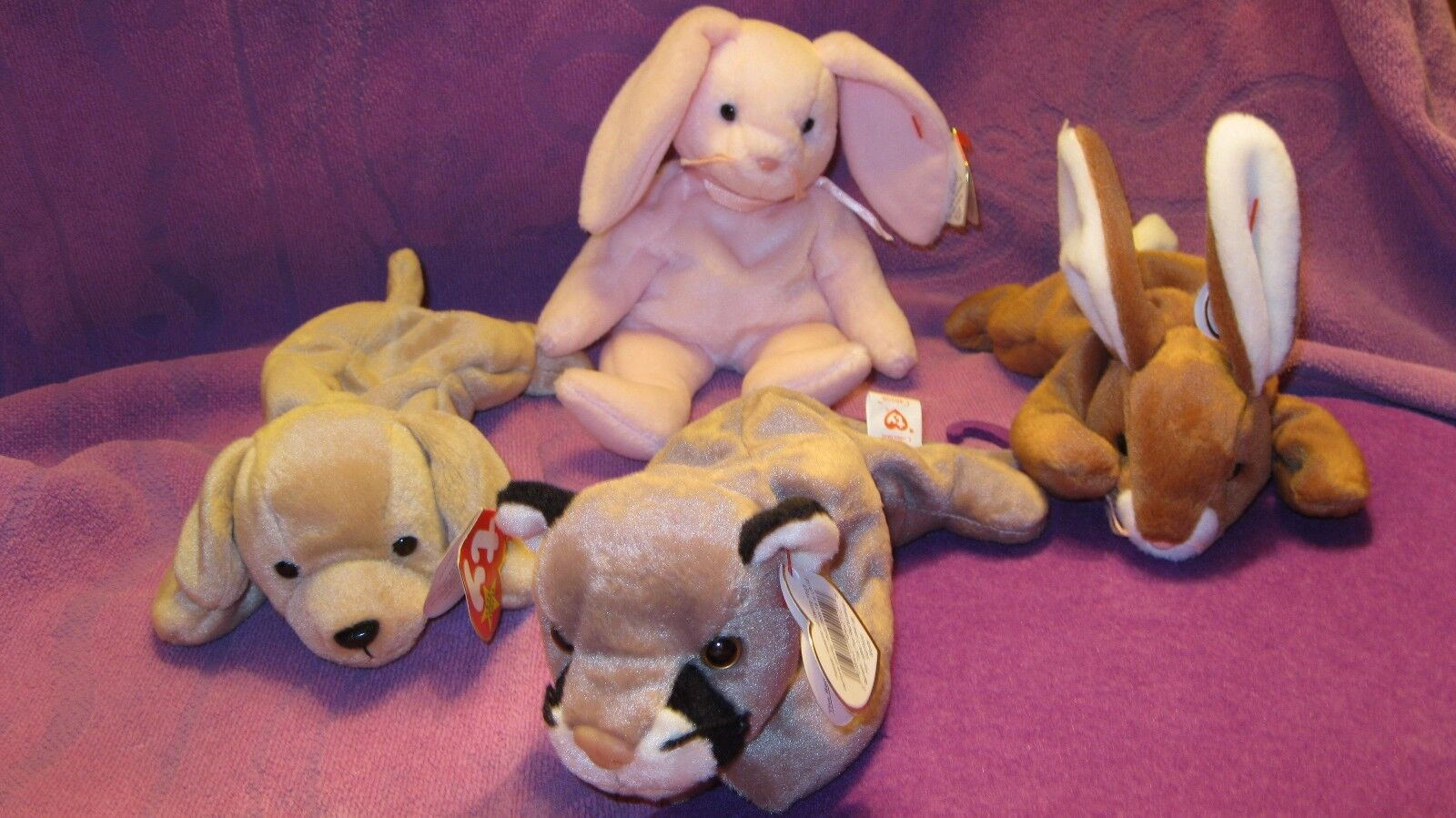 FETCH, HAPPILY, CANYON,  AND EARS  BEANIE BABIES