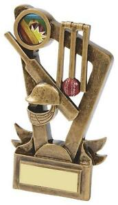 155mm-Cricket-Trophy-RRP-8-95-Free-Engraving-amp-Postage