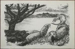 Otters-by-Ann-R-Thomas-Argyll-Scotland-Vintage-Greeting-Card