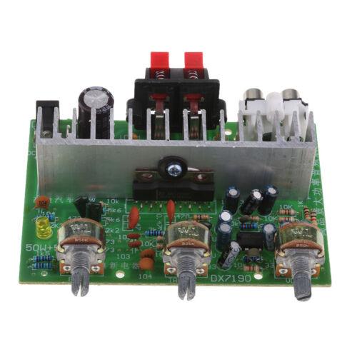 50W Dual Kanal Audio Endstufe DC 12-24 V Digital Stereo Verstärker Platine