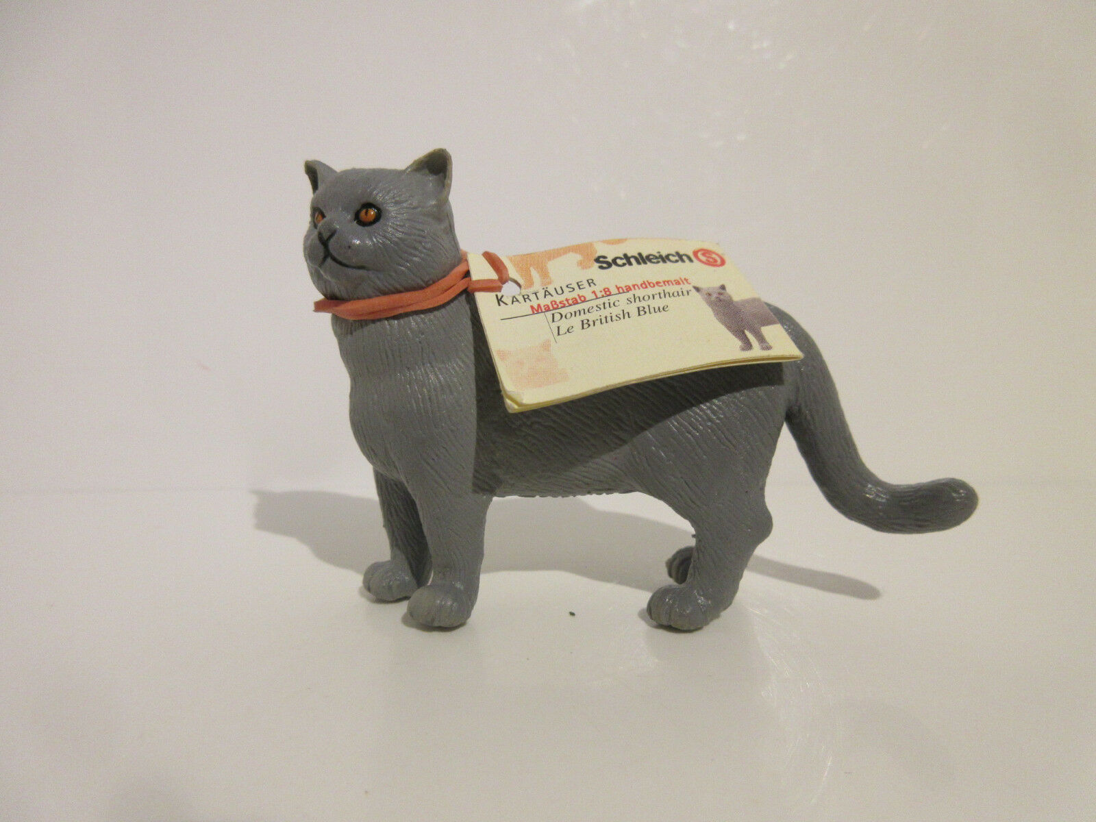 16651 Schleich Cat:  British Blau Cat, standing  booklet   ref : 21P5