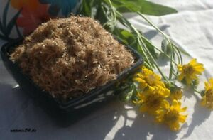 Krauterino 24-Arnica fiori messicano tagliati - 50g