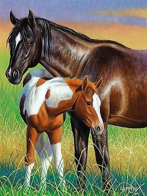 Pferde Koppel Blumenwiese Fohlen Stute blauer Wallario Poster in 61 x 91,5 cm