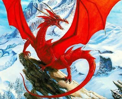 Red Dragon Cross Stitch Chart d020 200 millones de EUR!