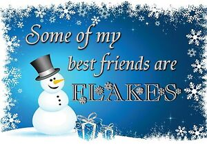 Magnet Christmas Snowman Snowflakes Top Hat Some Of My Best Friends Are Flakes Ebay