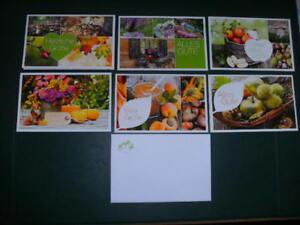 6-x-Glueckwunschkarte-Grusskarte-Klappkarte-mit-Kuvert-weiss-NEU-15-x-9-5-cm