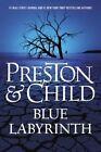 Blue Labyrinth by Douglas J Preston, Lincoln Child (Hardback, 2014)