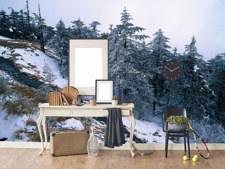 3D Berge, schnee 3441 Fototapeten Wandbild Fototapete BildTapete Familie
