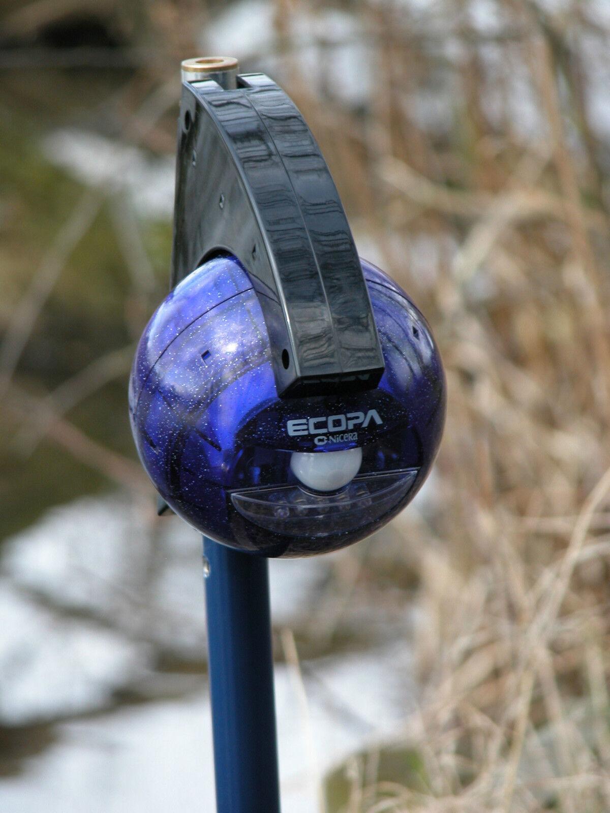Motion Sensing LED Night Light Carp Fishing