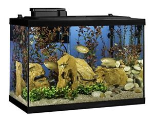 20-Gallon-Aquarium-Fish-Tank-Complete-Kit-with-Heater-Filter-LED-Lighting-Plants
