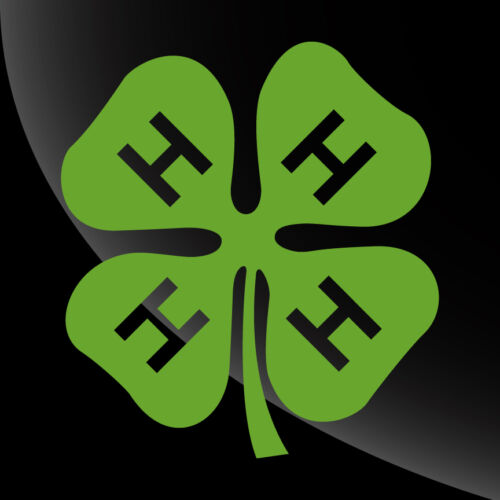 4H Club Decal Sticker - TONS OF OPTIONS