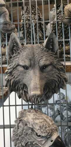 Wolf Pierre personnage Jardin Figurine tête de loup Gartendeko murale zr0034