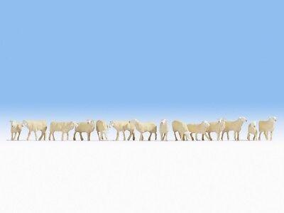 NOCH 15749 Sheep OO HO