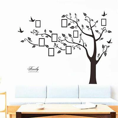 Family Tree Picture Frames Wall Decor Decal Mural Wallpaper Peel and Stick Multi