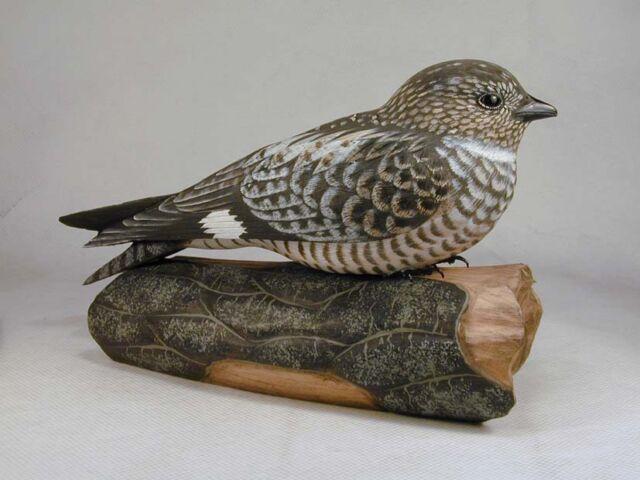 Hummingbird Studio--Common Nighthawk Original Carving