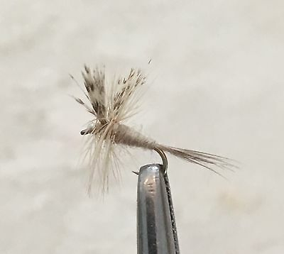 size 12 Light Cahill Dry Fly Per 6 Fishing Flies