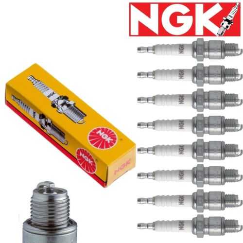 8 NGK Standard Plug Spark Plugs for 2003-2004 Toyota 4Runner 4.7L V8 Kit Set