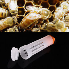 10Pcs Beekeeping Rearing Cup Kit Queen Bee Cages Beekeeper Protective Equipment