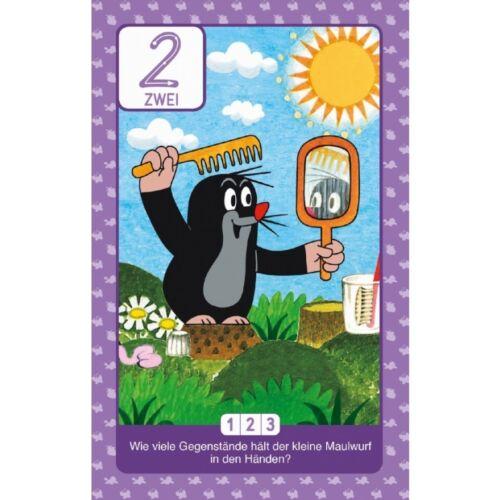 Lernkarten Schreib und Wisch weg Maulwurf