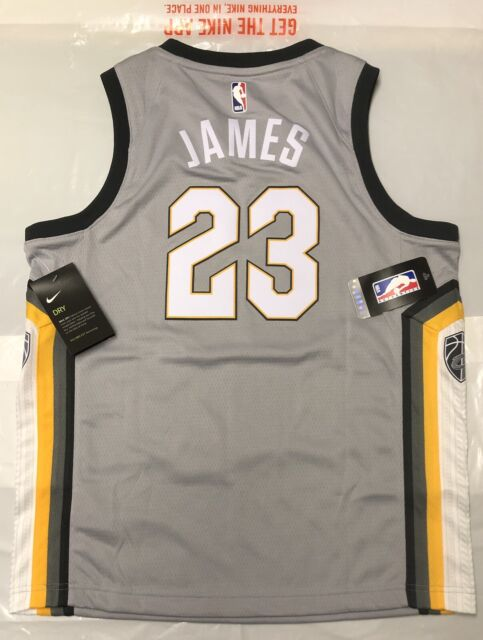 sports shoes 697aa e7ca9 NIKE NBA CLEVELAND CAVALIERS LEBRON JAMES TANK TOP Vest New With Tags YOUTH  LRG