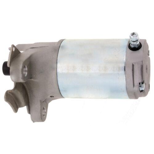 Original Castelgarden GGP Anlasser Starter TRE WM 12,5 13,5 14,5 16  118550214//0