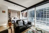 Fully Furnished One Bedroom apartment Downtown! Vancouver Greater Vancouver Area Preview