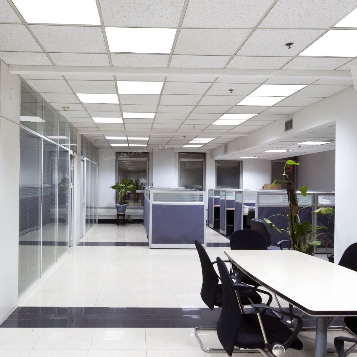48W Ceiling Suspended Recessed LED Panel White Light Office Salon 600 x 600