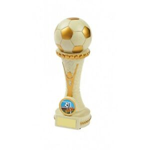185mm-Football-Trophy-RRP-11-75-engraved-and-postage-free