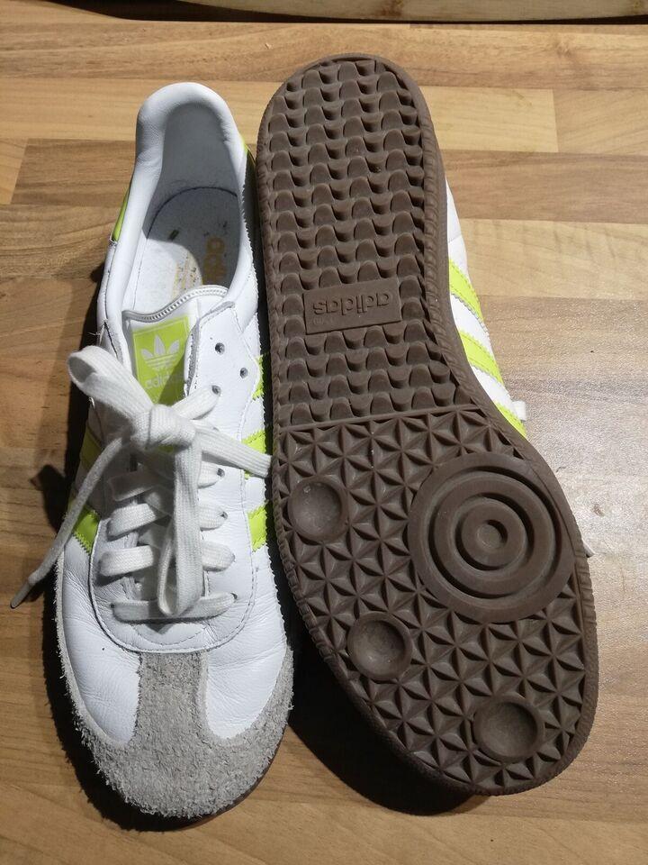 Løbesko, Trænings sko, Adidas