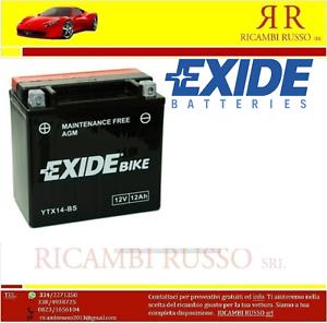 BATTERIA-EXIDE-YTX14-BS-FIAMM-FTX14-BS-HONDA-1100-VT-C2-SHADOW-2004-gt-2007