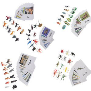 60x Miniature Montessori Wild Jungle Animals Figures With Matching Cards