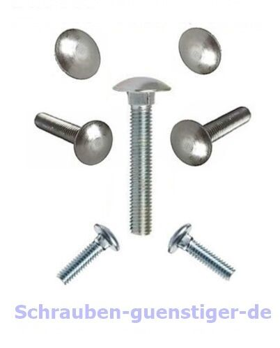 5 Stk Schloß-Schrauben 10 mm M10 DIN 603 Vollgewinde 10 x 70 Edelstahl A2