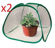 2 x Mini Pop Up Greenhouse Outside Patios Inside Cover Green House Plant Plants