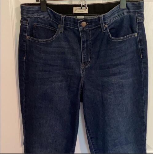 Cambridge Dry Goods Jean Skinny Jegging Size 12