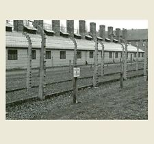 Auschwitz German Prison Camp PHOTO World War II Concentration Camp Fence