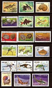 VIETNAM-Peces-pajaros-conchas-fish-birds-cascaras-de-153B