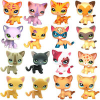 Littlest Pet Shop Short Hair cat LPS toys EUROPEAN San Diego Comic Con Kitty