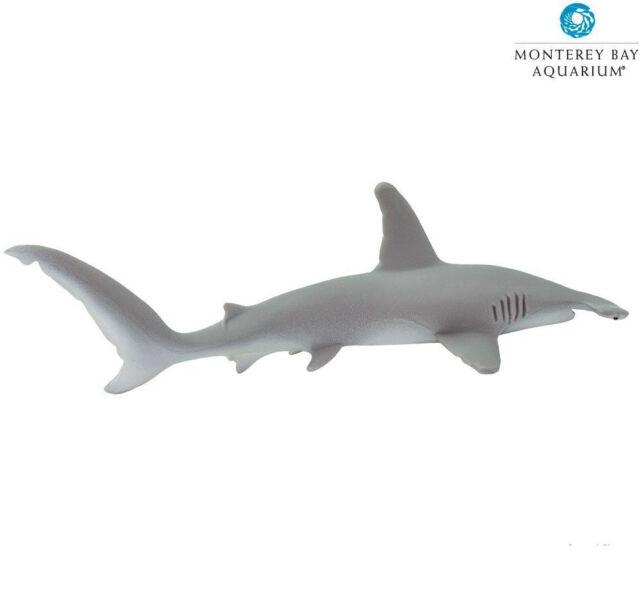 HAMMERHEAD SHARK ~NEW Version ~ 210702 ~Monterey Bay~FREE SHIP/USA w/$25+ SAFARI