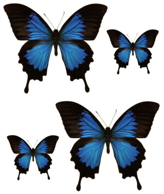 4x sticker aufkleber auto motorrad zimmer schmetterling blau schwarz