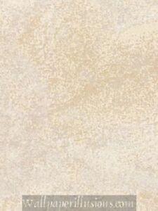 Image is loading 8x10-SAMPLE-5807070-Roman-Illusion-Champagne-Paper-Illusions-