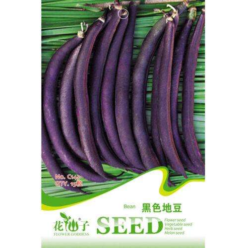 Heirloom Dark Bush Bean Royal Burgundy Phaseolus Vulgaris 15 Seeds Original Pack