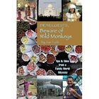 Dear Guests Beware of Wild Monkeys 9781452044460 by Joe Tash Paperback