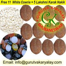 Mantra Siddha Laghu Shriphal (Nariyal/Small coconut) 11 Pcs+11 Cowrie+5 Hakik