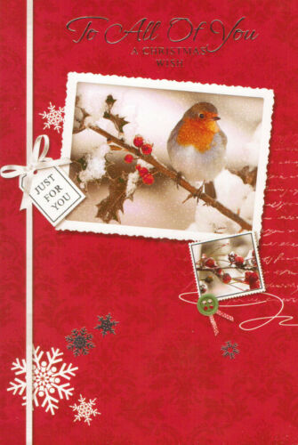 multi-listing traditional TO FOR ALL OF YOU christmas card robins