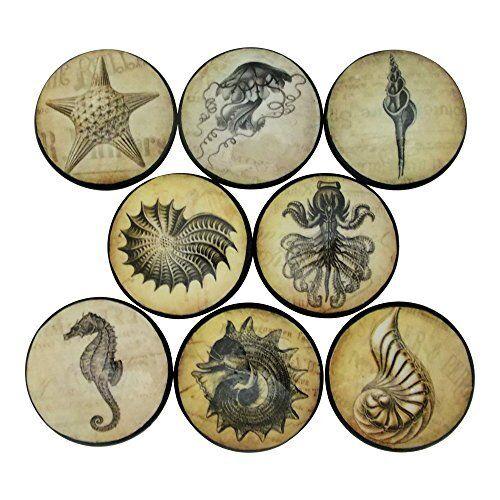 Set of 8 Vintage Sealife Nautical Cabinet Knobs