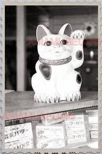 40s-WW2-JAPAN-TOKYO-CAT-WELCOME-CUSTOMER-SHOP-STORE-MISAWA-GOOD-LUCK-Photo-26084