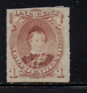 Newfoundland Sc 37 1877 1c Prince of Wales stamp rouletted mint Free Shipping