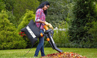 Clean up Your Yard for Fall