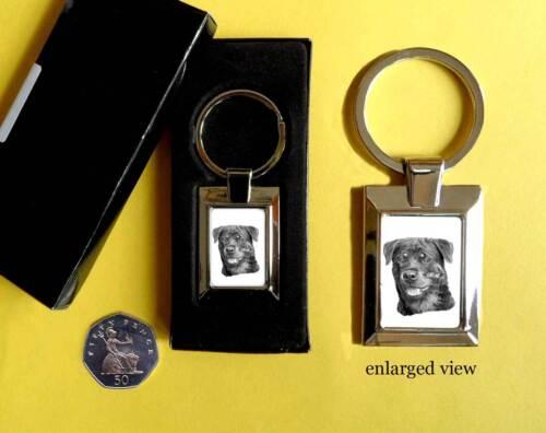 Rottweiler Dog Rectangular Chrome Plated Keyring Boxed Gift Key Fob