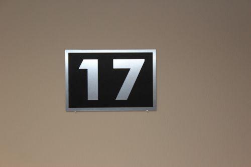 Hausnummer  im Edelstahl Look Hausnummernschild mit Wunschnummer 250x170  N5